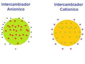Fases de Intercambio iónico